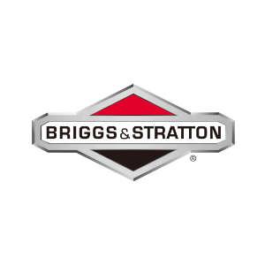 agregaty-naprawa-briggs-stratton-300