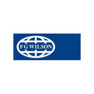 agregaty-naprawa-fg-wilson-300