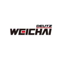 agregaty-naprawa-weichai-300